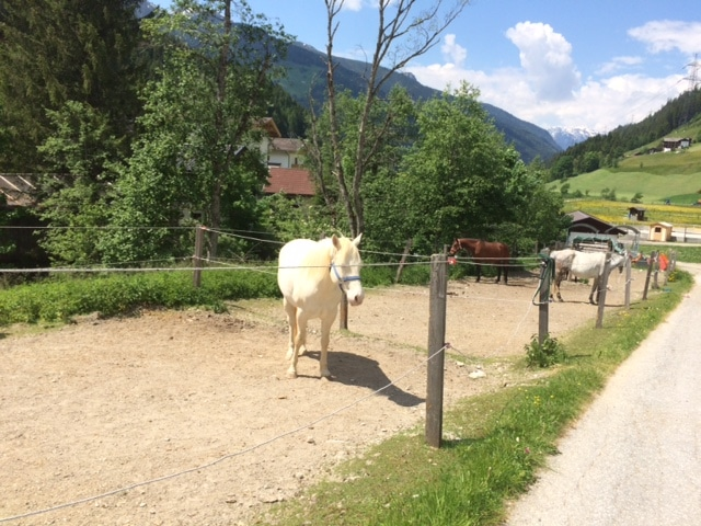 Familienurlaub Zillertal Frau Mutter Blog 1