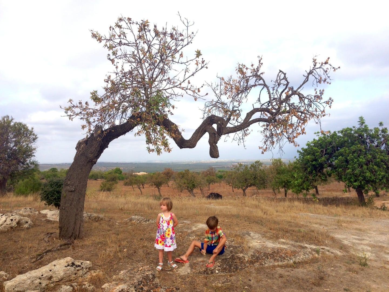 5 Familienurlaub Mallorca Frau Mutter Blog