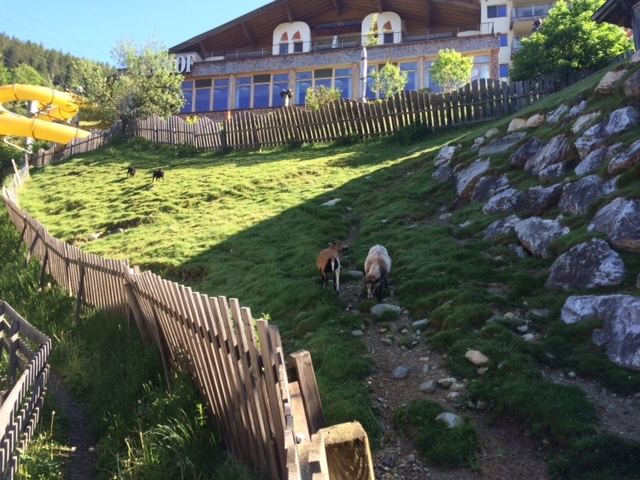 Familienurlaub Zillertal Frau Mutter blog 2