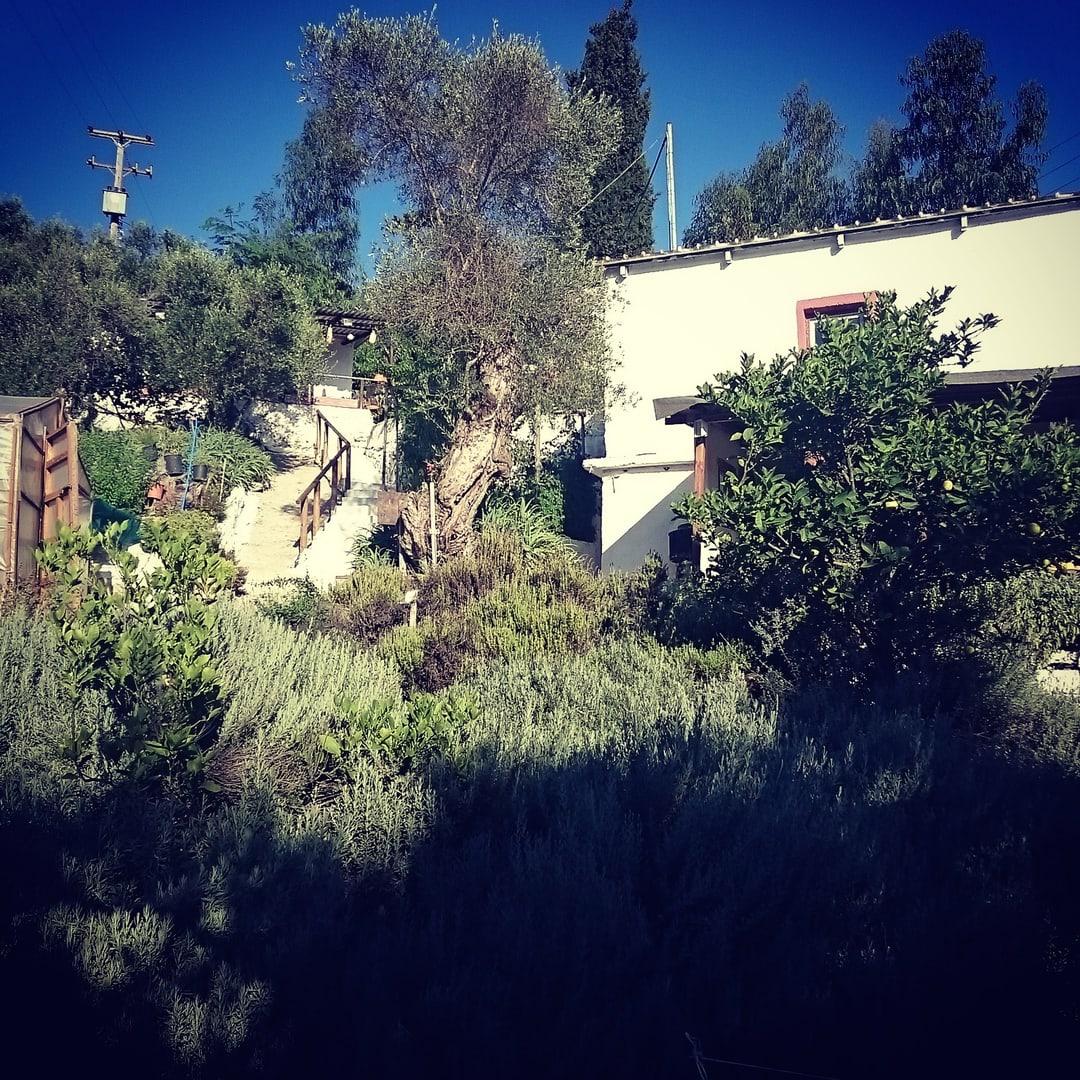 Maravel Garden Spili Kreta