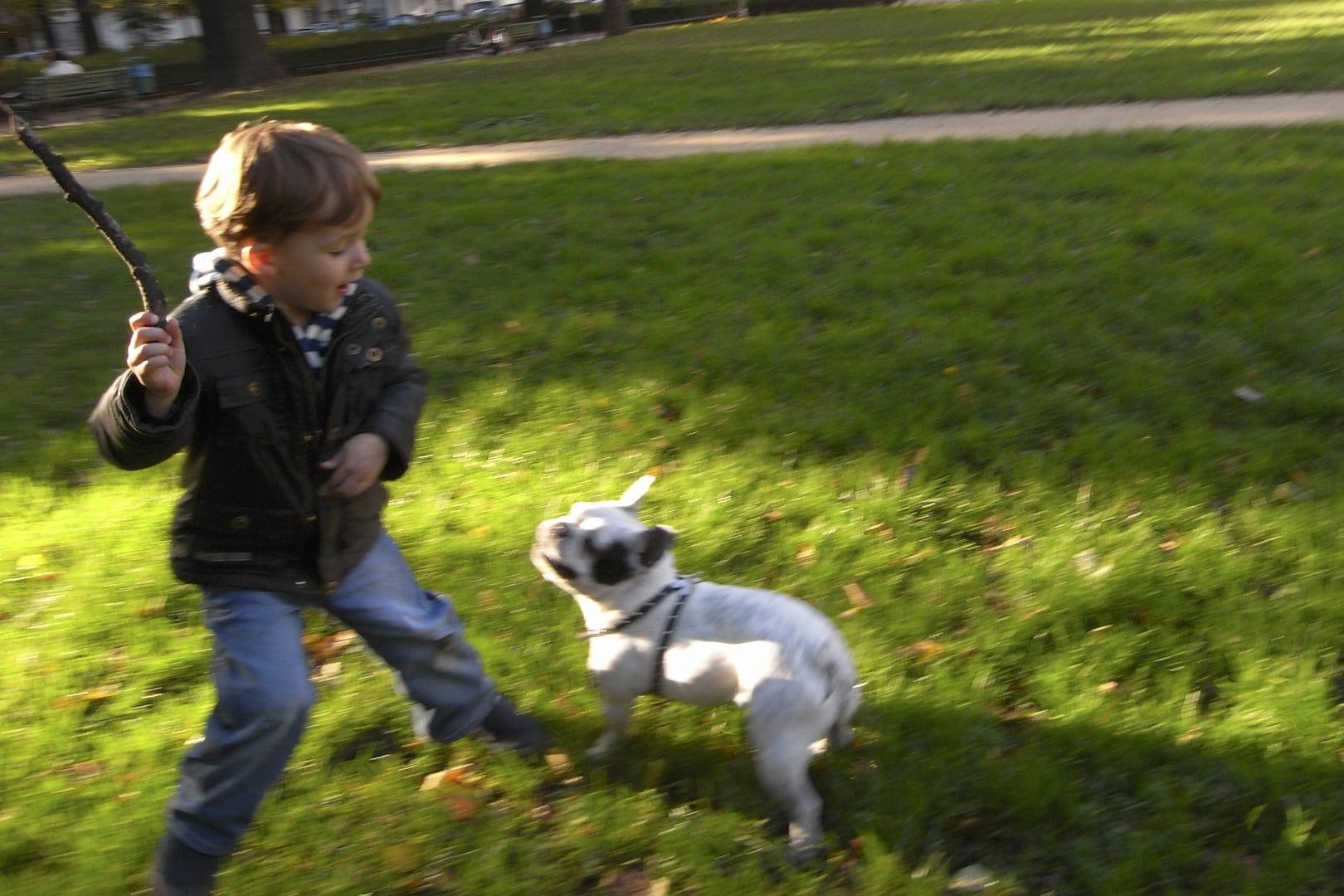Hunde und Kinder Frau Mutter Blog