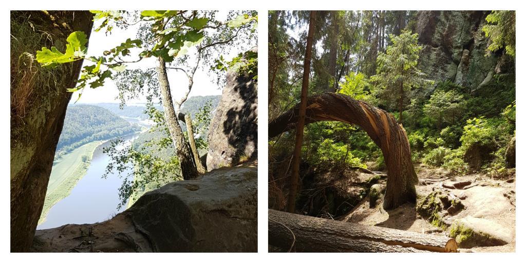 elbsandsteingebirge mit Kindern blick auf elbe
