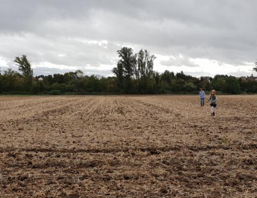 Kinder rennen über Feld
