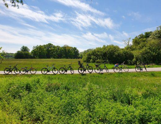 viele unbemannte Fahrräder vor einem blauen Himmel als Symbol für micro community