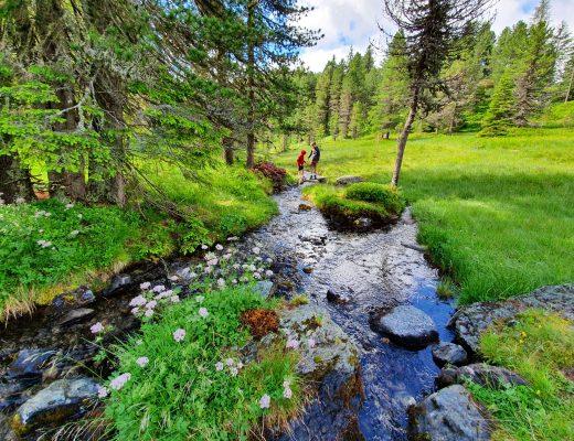 Turracher Höhe: Wanderurlaub in der Steiermark mit Kindern