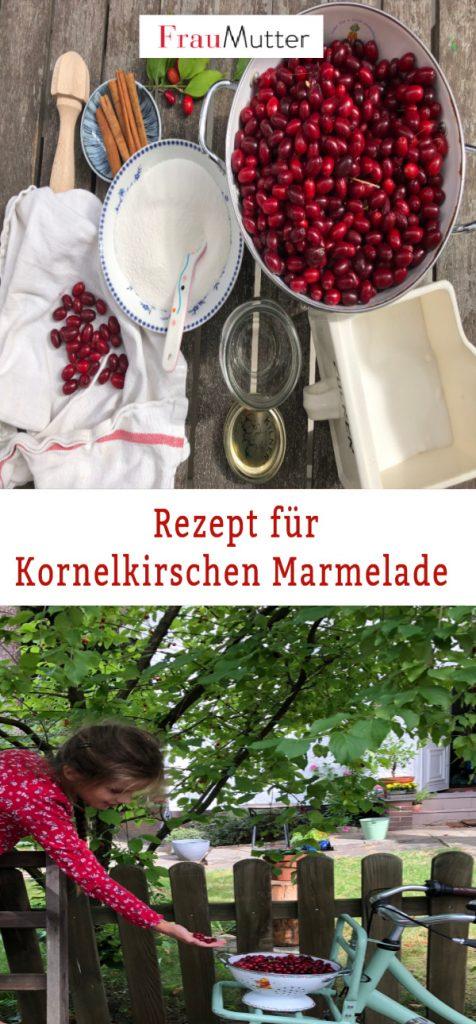 Kornelkirschen_Marmelade_Zutaten und Ernten